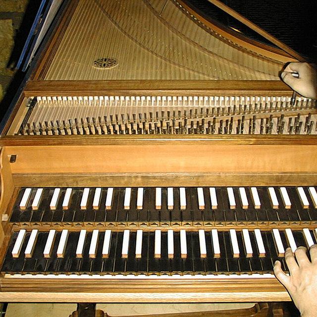 Dynamics on a Harpsichord