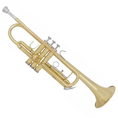 Bach TR300H2 Trumpet